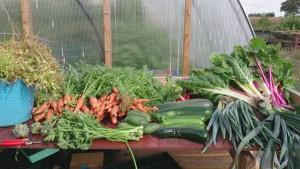 grönsaksbord